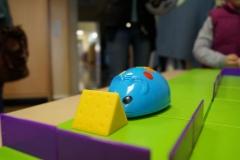 forscherlabor Maus programmieren