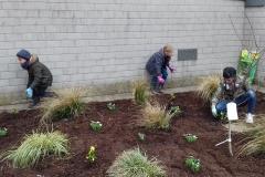 Gartenprojekt3